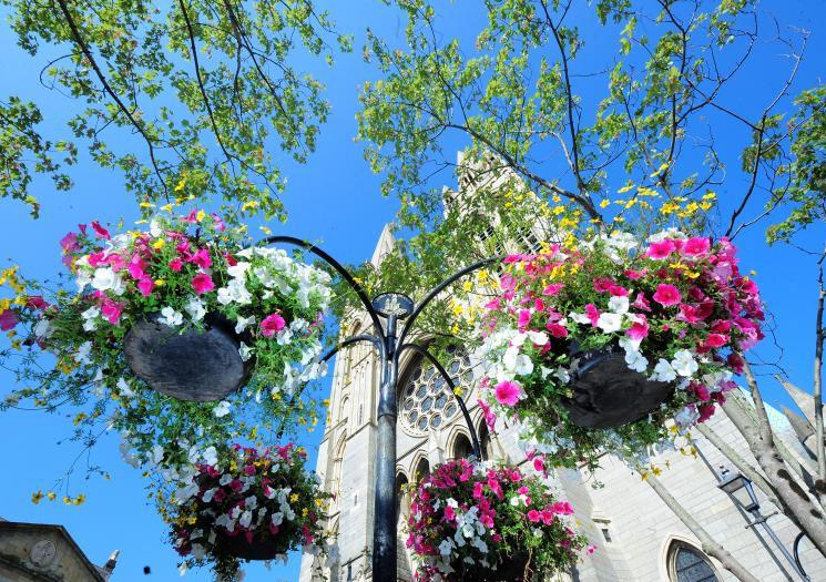 Flowers cathedral_0